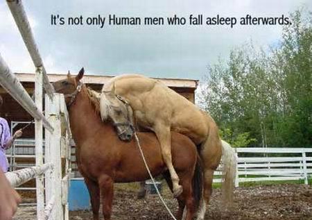 No solo los hombres se quedan dormidos!